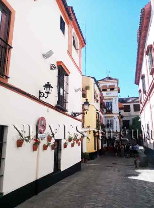 Quartier de Santa Cruz