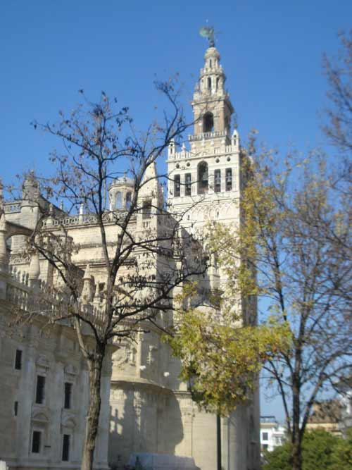 General view of the cathedral and the Giralda of Seville