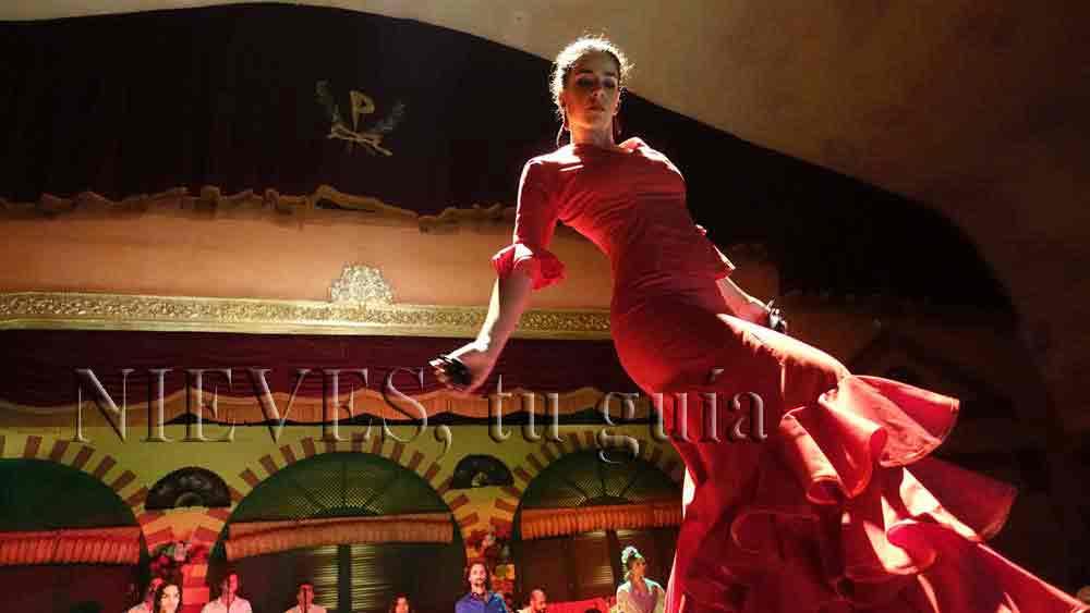 Danse Flamenco à Séville