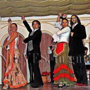 Baile Flamenco en Sevilla