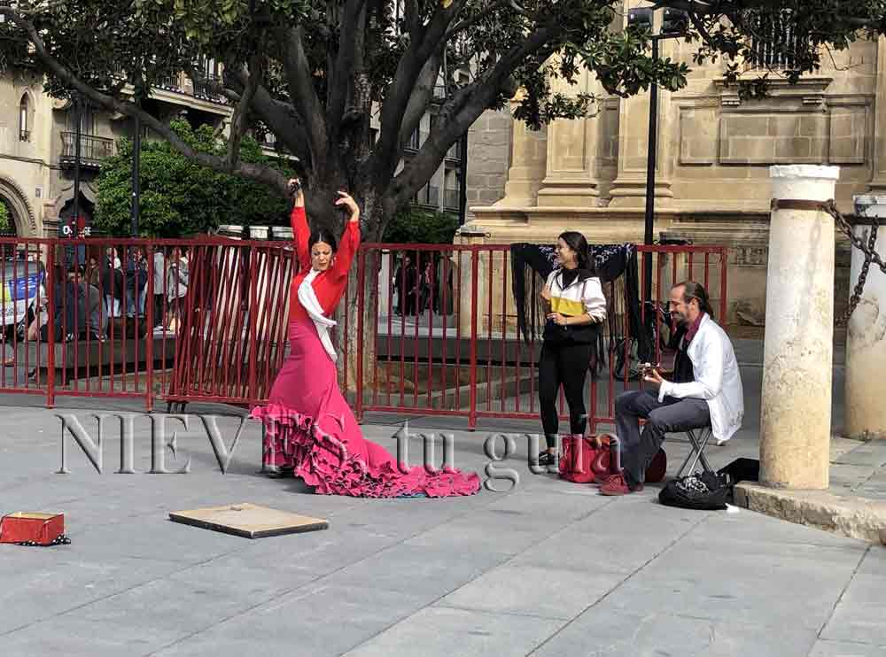 Flamenco dancing in Seville