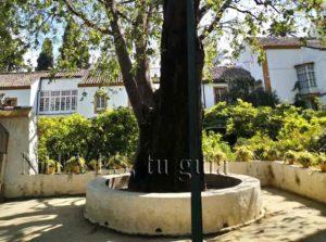Jardines Palacio de las Dueñas