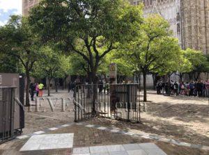 Patio de los naranjos en la catedral de Sevilla